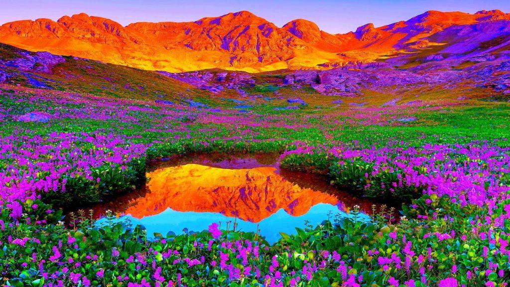 Ảnh nền thiên nhiên đẹp dành cho máy tính