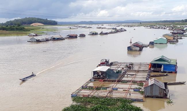 Đóng góp mà sông Đồng Nai