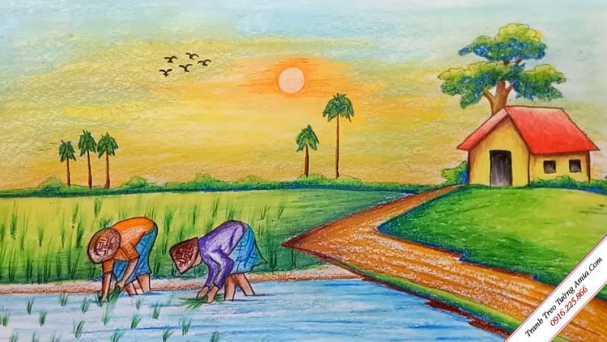 Tranh vẽ phong cảnh lớp 7